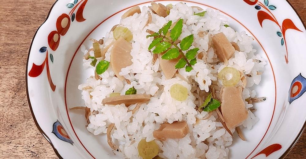 旬の味!山菜の下処理方法とおすすめの山菜炊き込みご飯レシピ