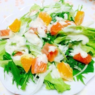 サーモンとデコポンのヘルシー野菜サラダ