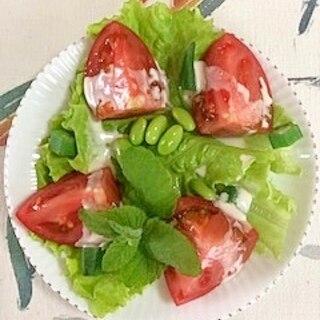 リーフレタス、トマト、枝豆、オクラのサラダ