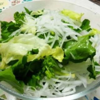 ルッコラと大根のサラダ