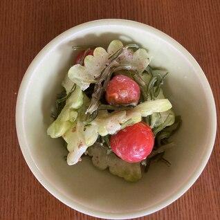 ゴーヤ*ミニトマト*茎わかめのサラダ