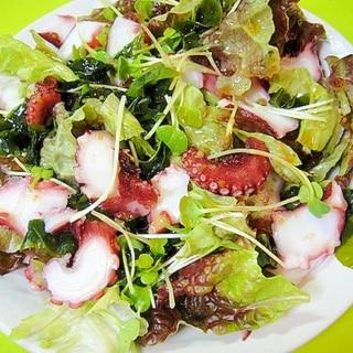 タコとわかめの和風サラダ