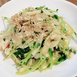 【レンジで簡単】豆苗とメンマの中華和え!