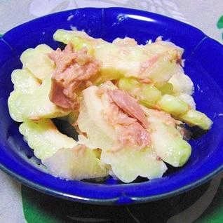 アップルゴーヤとツナの簡単サラダ