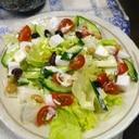ハンペンキュウリビーンスの辛子サラダ