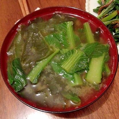 妊婦食☆小松菜とワカメの味噌汁