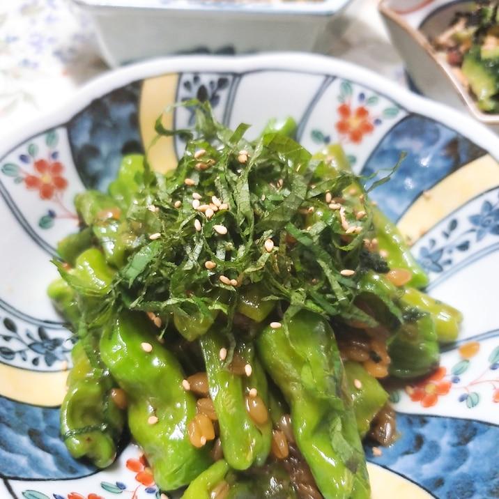 レシピ もろみ 味噌