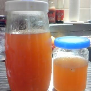 手作り酵素シロップ