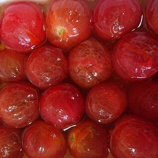 さっぱり常備菜☆プチトマトの和風マリネ