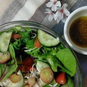 チアシード入りドレッシング❤茗荷乗せ野菜サラダ♪