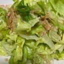 食物繊維たっぷりレタスと寒天のサラダ