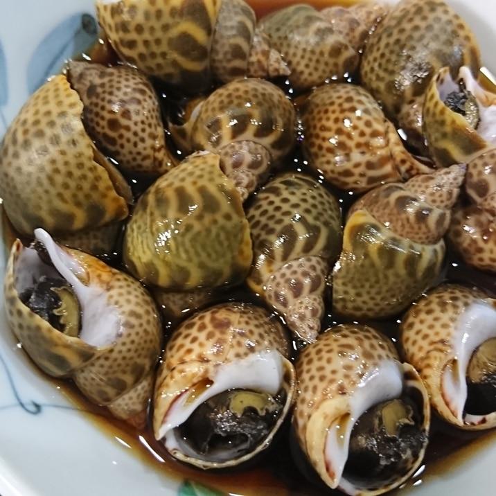 ★簡単!美味しい!お酒のおともに♪バイ貝の煮付け★