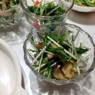 簡単に副菜❗️茄子と水菜と塩昆布のポン酢和え