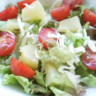 リンゴコンポート入り生野菜サラダ