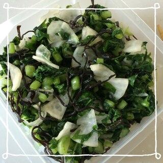 大根の葉と塩昆布の漬物꒰ ♡´∀`♡ ꒱
