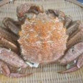蟹のゆで方