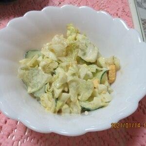 シャキシャキ♪レタスときゅうりのたまごサラダ