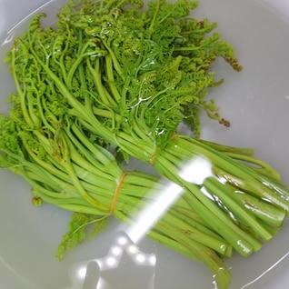 茹でたわらびの保存方法