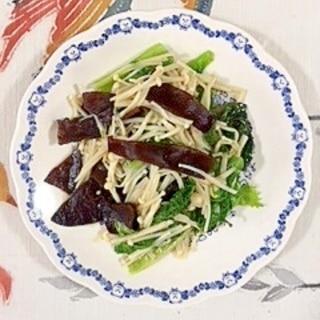 わさび菜、えのき、きくらげ、サンチュの炒め物