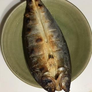 簡単おつまみ!魚焼きグリルで冷凍ホッケの干物!