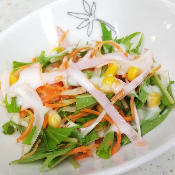 具だくさん♪水菜のサラダ