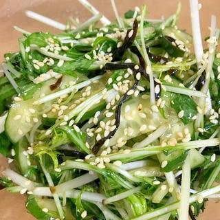 水菜と胡瓜の塩昆布和え