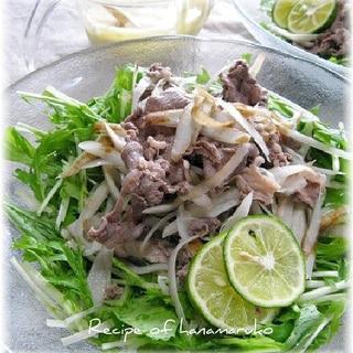 牛うす切り肉と水菜とごぼうサラダ