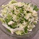 生白菜のシーザーサラダ