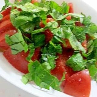 フレッシュトマトとバジルのサラダ