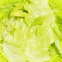青果さんから聞いた葉物野菜をパリッとさせるコツ