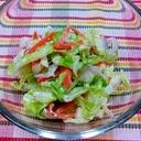 我が家の★コールスローサラダ