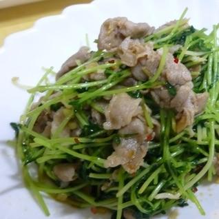 夏に食べたい!豆苗と豚肉のピリ辛スタミナ炒め