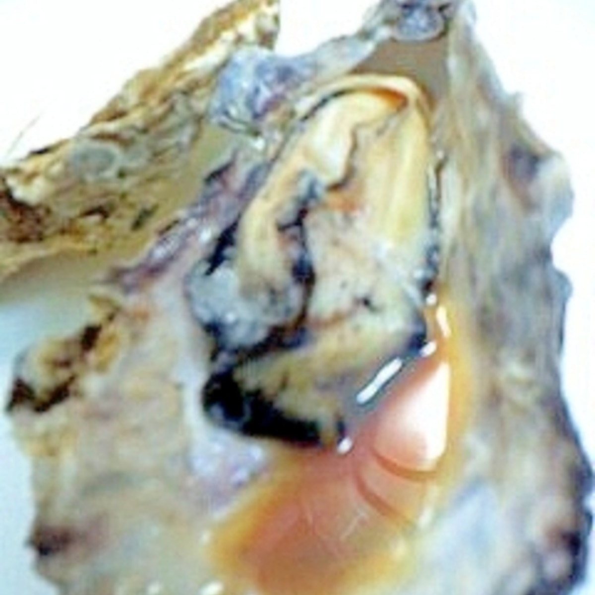 時間 牡蠣 レンジ