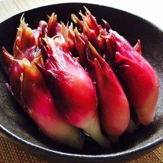 野菜を食す‼︎茗荷の甘酢漬け