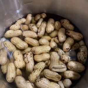 圧力鍋で簡単、生落花生の塩茹で