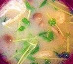 しめじと豆苗の味噌汁