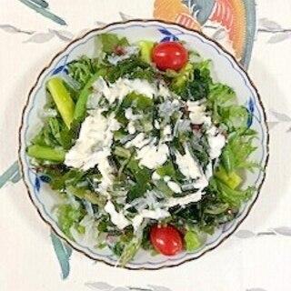フリルレタス 、海藻サラダ、アスパラのサラダ