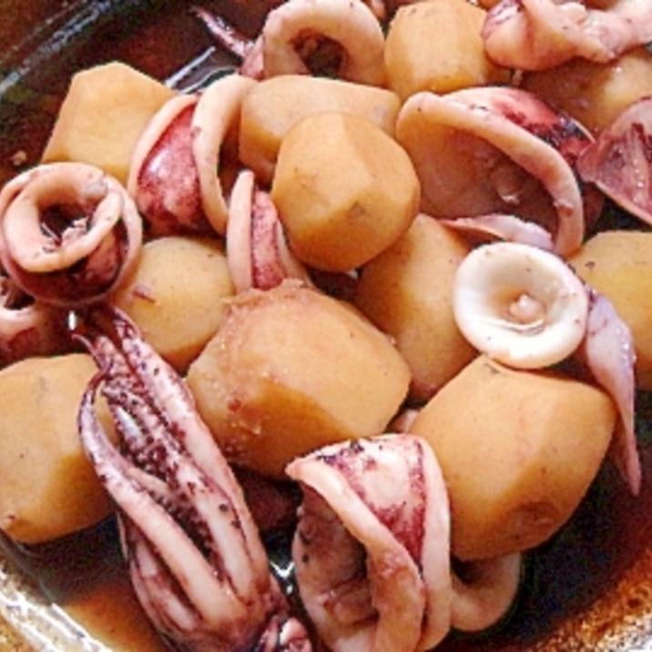 と 里芋 煮物 イカ の ヒイカと里芋のこっくり煮 作り方・レシピ