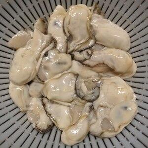 綺麗に洗えます!牡蠣の洗い方(下処理)