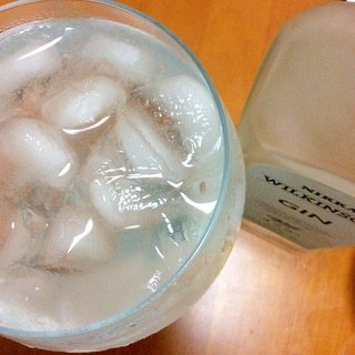 ジンレモン炭酸水割