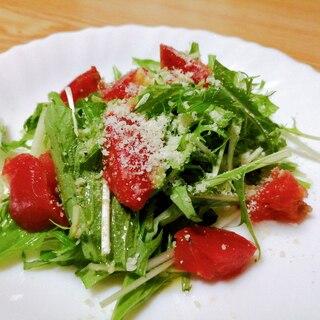 水菜とトマトと粉チーズのサラダ