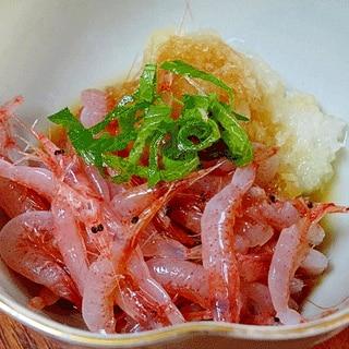 氷温で半解凍がコツ☆ 「生桜えびお刺身」