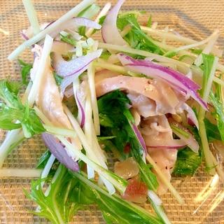 蒸し鶏と水菜とレッドオニオンサラダ