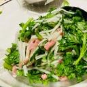 大根、春菊と、カリカリサラダ!
