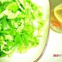 キャベツと鰹節のまろやか酢サラダグリル