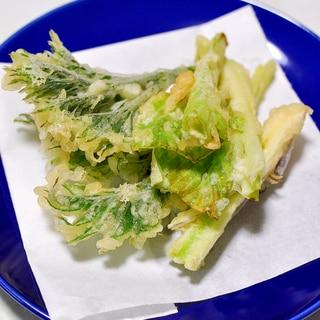 たらの芽とうるい(ギボウシ)の天ぷら
