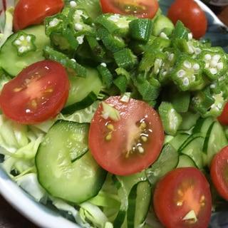 キャベツときゅうりとトマトとオクラのサラダ