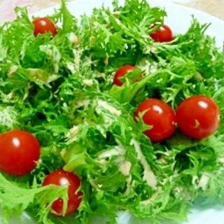 わさび菜とトマトのサラダ