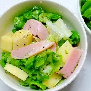 朝食に、リンゴ入りサラダ