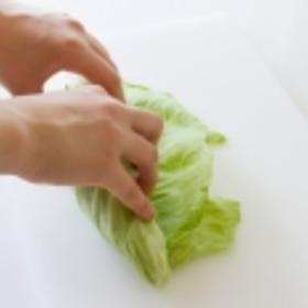 キャベツの切り方